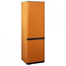 Двухкамерный холодильник Бирюса T380NF
